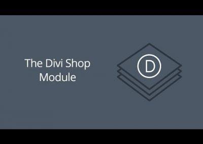 De Divi WebShop Module – Demo Tutorial